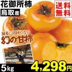 柿子 - 柿 鳥取産 花御所柿 5kg1組 送料無料 食品