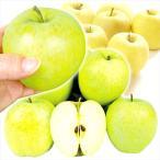 りんご 青森産 おまかせちびりんご・青りんご(10kg)50〜60玉 ご家庭用 小玉 品種おまかせ 林檎 フルーツ 国華園