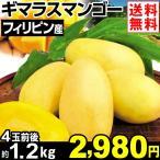 マンゴー フィリピン産 ギマラスマンゴー 約1.2kg1箱 送料無料 食品