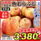 りんご 青森産 色むらふじりんご 10kg1箱 送料無料 ご家庭用 林檎 食品