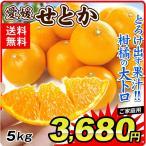 せとか 愛媛県産(5kg)訳あり ご家庭用 サイズ混合 柑橘の大トロ えひめ みかん 柑橘 フルーツ 果物 国華園