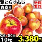 りんご 葉とらずふじ 10kg1箱 青森県産 ふじ 林檎 食品 果物