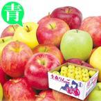 りんご お買得 青森産 おまかせ青りんご(10kg)24〜56玉 ご家庭用 品種おまかせ 林檎 フルーツ 国華園