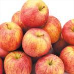 りんご 色むらふじりんご 10kg1箱 青森県産 ご家庭用 訳あり 林檎 食品 果物