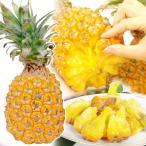 パイナップル 沖縄産 スナックパイン(3玉) ちぎって食べる 極甘 南国 フルーツ 国華園