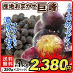 ぶどう 産地おまかせ 巨峰(約1kg)約350g×3パック ご家庭用 濃厚 きょほう 葡萄 グレープ フルーツ 国華園