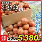 たまねぎ 北海道産 小玉たまねぎ 20kg 1箱 送料無料 食品 国華園