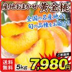 桃 長野産 黄金桃(5kg)16〜24玉 品種おまかせ 完熟 トロトロ もも ピーチ フルーツ 国華園