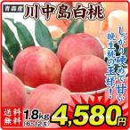 桃 青森産 川中島白桃(約2kg)6〜12玉 ご家庭用 かわなかじま もも ピーチ フルーツ 国華園