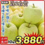 りんご 大特価 青森産 星の金貨 10kg1箱 ご家庭用 【数量限定】 林檎 食品 果物 国華園