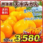 みかん 熊本産 天水みかん(10kg)蜜柑 柑橘 フルーツ 果物 食品 国華園