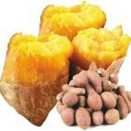 安納芋 種子島産 安納芋ミックス 10kg さつまいも 食品 グルメ 国華園