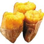 種子島産 安納芋 10kg 1組