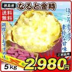 徳島産 お買得なると金時 5kg 1箱
