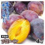 プルーン 青森南部産 プルーン 4kg 果物 食品 グルメ 国華園