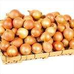 たまねぎ 北海道産 小玉たまねぎ(20kg)S〜M ご家庭用 玉葱 使い切り 野菜 国華園