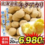じゃがいも 北海道産 キタアカリ 20kg ジャガイモ じゃが芋 野菜 国華園