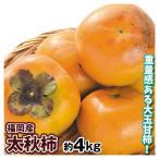 柿 福岡産 太秋柿 約4kg 1箱 送料無料 食品 国華園