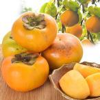 大特価 家庭用太秋柿 8kg 1組