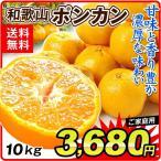 みかん 和歌山産 ポンカン(10kg)ご家庭用 無選別 サイズ混合 柑橘 かんきつ フルーツ 国華園