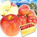 りんご 青森産 サンふじ(20kg)50〜90玉 木箱 ご家庭用 無選別 さんふじ 林檎 フルーツ 果物 国華園