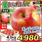 りんご 青森産 ご家庭用 葉とらずふじ(5kg)13〜25玉 林檎 フルーツ 国華園