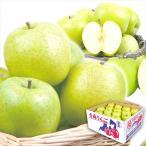 りんご 青森産 ご家庭用 王林 10kg 1箱 送料無料 食品 国華園
