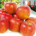 りんご 青森産 高糖度サンふじ(5kg)13〜25玉 糖度13%以上 光センサー選果 林檎 フルーツ 国華園