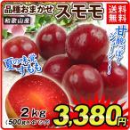 桃 和歌山産 おまかせスモモ(2kg)500g×4パック ご家庭用 品種おまかせ 旬を厳選 もも ピーチ フルーツ 国華園