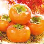 和歌山産 富有柿 7.5kg 1組