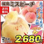 桃 福島の桃 ミスピーチ(約2kg)6〜11玉 ご家庭用 光センサー選果 JA福島 もも ピーチ フルーツ 国華園