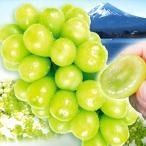 ぶどう お買得 シャインマスカット(約700g)約350g×2パック ご家庭用 種なし 皮ごとOK 極甘 葡萄 グレープ フルーツ 国華園