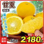 みかん 熊本産 ご家庭用 甘夏 5kg1箱 蜜柑 柑橘 フルーツ 果物 食品 国華園