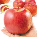 りんご 山形産 大玉ふじ 「でかふじ」 5kg1箱 フルーツ 果物 林檎 国華園