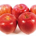 りんご 青森産 ひろさきふじ 10kg1箱 フルーツ 果物 林檎 国華園
