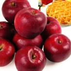 りんご 青森産 紅玉 10kg1箱 フルーツ 果物 林檎 国華園