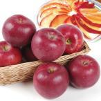 りんご 青森産 紅玉(10kg)24〜56玉 こうぎょく パティシエ御用達 お菓子作り ジョナサン 千成 満紅 林檎 フルーツ 国華園