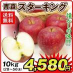 りんご 青森産 スターキング(10kg)26〜50玉 昭和の懐かしの味 スターキングデリシャス 希少品種 林檎 フルーツ 国華園