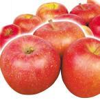 りんご 青森産 早生ふじ 10kg1箱 フルーツ 果物 林檎 国華園