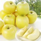 りんご 青森産 シナノゴールド(5kg)12〜28玉 林檎 フルーツ 国華園