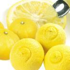 みかん 和歌山産 ご家庭用 はるか 5kg1箱 フルーツ 果物 柑橘 国華園