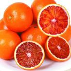 みかん 和歌山産 タロッコオレンジ 5kg1箱 フルーツ 果物 柑橘 国華園