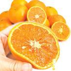 みかん 愛媛産 なつみ(5kg)1箱 南津海 ご家庭用 えひめ フルーツ 果物 柑橘 国華園