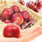 りんご 青森産 アルプス乙女(3kg)30〜100玉 ご家庭用 姫りんご おとめ 林檎 フルーツ 国華園