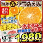 みかん 熊本産 小玉みかん 極早生(10kg)ご家庭用 3S〜2Sサイズ 大特価 蜜柑 フルーツ 果物 国華園