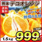 みかん 大特価 熊本産 デコオレンジ (1.5kg) ご家庭用 デコポンと同品種 不知火オレンジ  蜜柑 柑橘 フルーツ 果物 食品 国華園