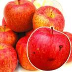 りんご 青森産 傷あり美味しいサンふじ 10kg1箱 林檎 フルーツ 果物 国華園