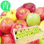 食品 青森産 お買得 おまかせ青りんご 約20kg 木箱 1組 りんご 国華園