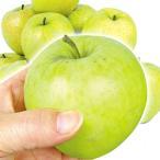食品 青森産 ご家庭用 王林 10kg 1組 りんご 国華園