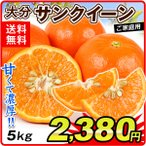 みかん 大分産 訳あり サンクイーン(5kg)ご家庭用 訳あり春カンキツ フルーツ 果物 数量限定 国華園